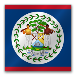 Belize International Business Corporation